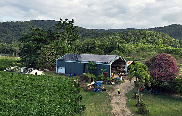 Port Douglas Fruit Farm Solar Supplier